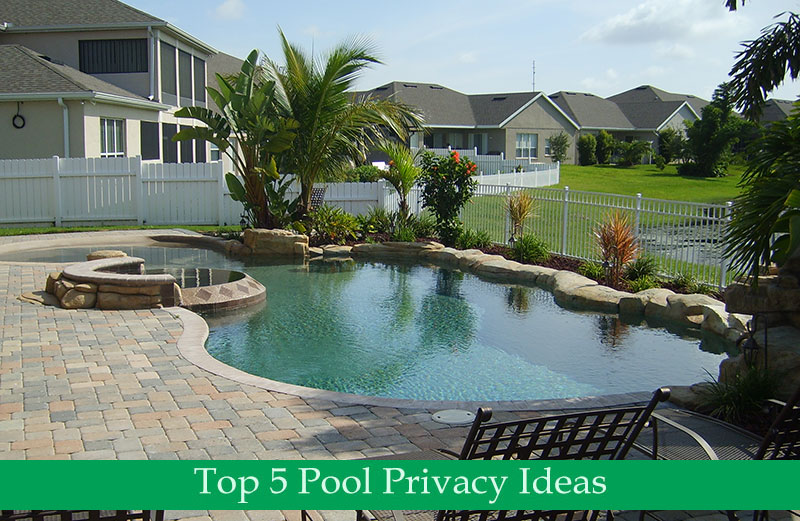 Above Ground Pool Privacy Screen pool privacy ideas | pool design & pool ideas